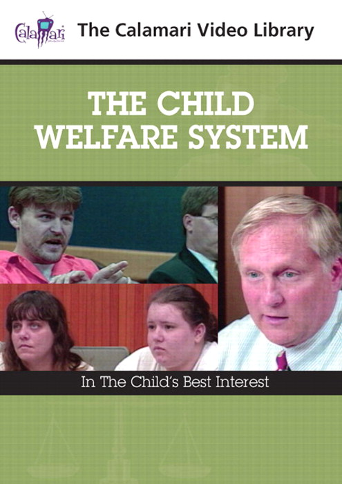 Child Welfare System,The: In the Child's Best Interest