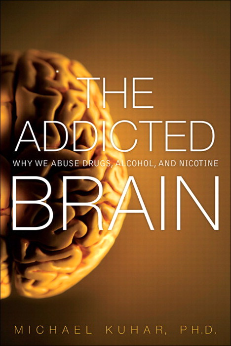 Addicted Brain, The: Why We Abuse Drugs, Alcohol, and Nicotine, CourseSmart eTextbook