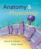 physiology 6th edition anatomy physiology 6th edition fandeluxe Images