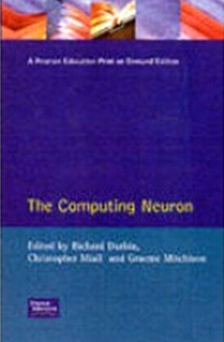 The Computing Neuron