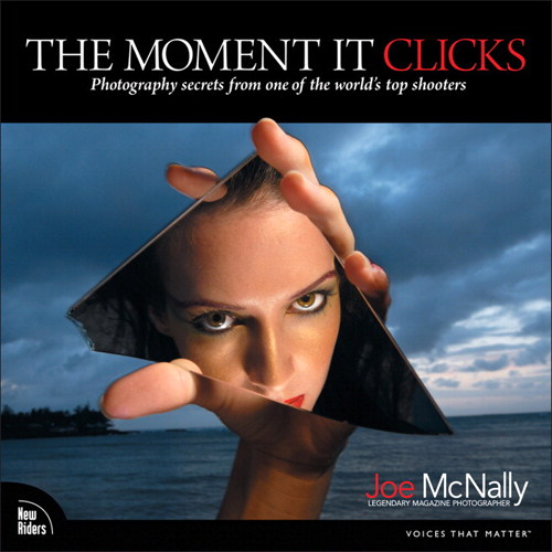 Moment It Clicks, The: Photography secrets from one of the world's top shooters, Safari