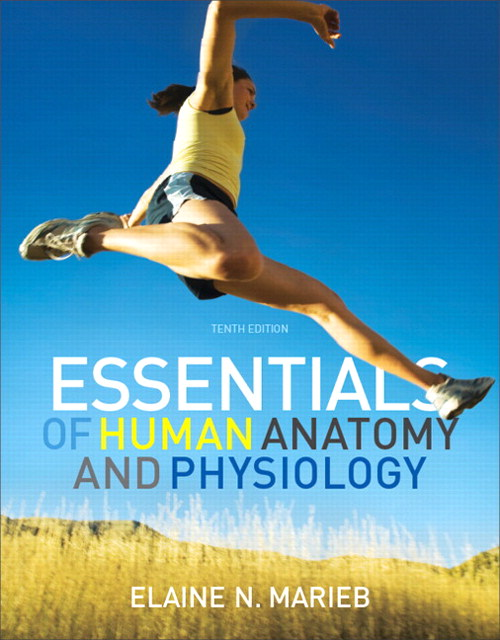 Essentials of Human Anatomy and Physiology with Essentials of Interactive Physiology CD-ROM, 10th Edition