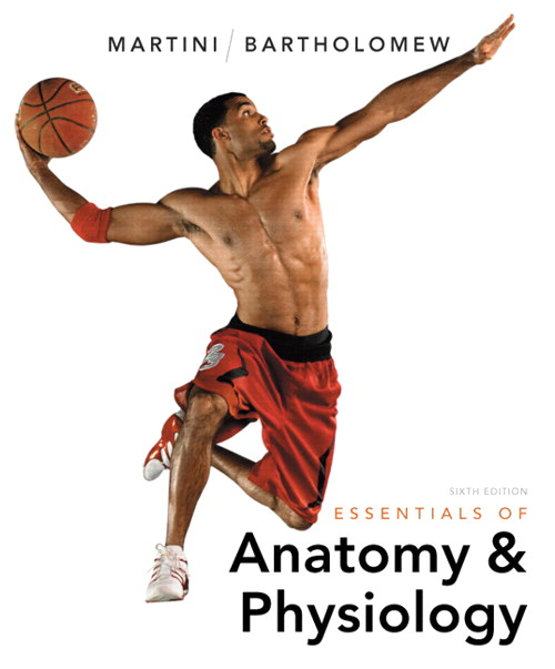 Essentials of Anatomy & Physiology, 6th Edition